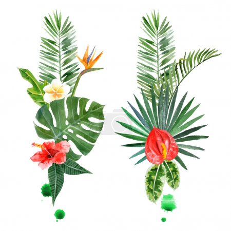 Illustration for Watercolor tropical plants for your designs over white background - Royalty Free Image