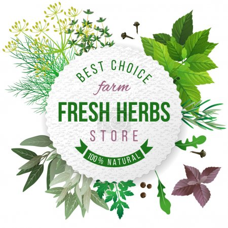 Illustration for Fresh herbs store emblem - easy to use in your own design - Royalty Free Image