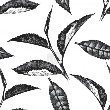 Hand drawn seamless pattern with tea leafs on whit...