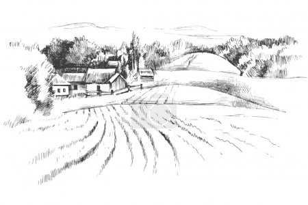 Illustration for Hand drawn black and white landscape with fields - Royalty Free Image