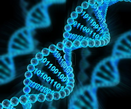 Photo for DNA molecules with binary code, 3d render, dark background - Royalty Free Image