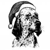 English setter dog with christmas santa hat