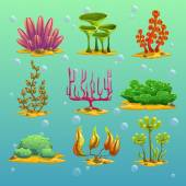 Cartoon algae set