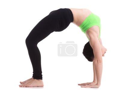 Photo for Beautiful sporty girl doing fitness workout, exercise bridge, asana urdhva dhanurasana, Upward Bow (Wheel) yoga Pose, training for strong back and shoulder muscles - Royalty Free Image