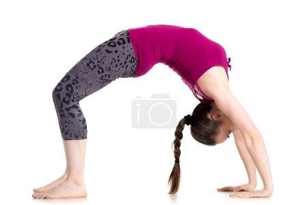 Photo for Sporty beautiful young woman doing Bridge Pose, standing in Urdhva Dhanurasana (Upward Bow), Chakrasana (Wheel) posture, studio full length isolated shot on white background, side view - Royalty Free Image