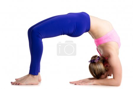 Photo for Sporty beautiful young blond woman doing Bridge Pose on elbows, variation of Urdva Dhanurasana (Upward Bow), Chakrasana (Wheel) posture, studio full length isolated shot on white background - Royalty Free Image
