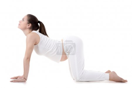 Prenatal Yoga, Cow pose