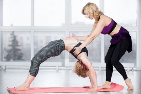 Photo for Fitness, stretching practice, group of two attractive smiling fit mature women working out in sports center, instructor helping female student to do exercise bridge, Upward Bow (Wheel) Pose in class - Royalty Free Image