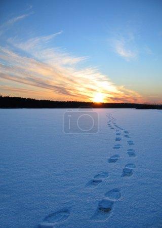 Photo pour Chemin d'accès d'empreintes humaines dans la neige au coucher du soleil - image libre de droit