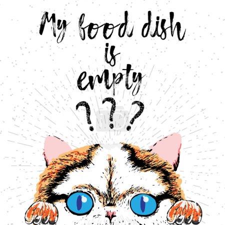 kitty on textured sparkle background.