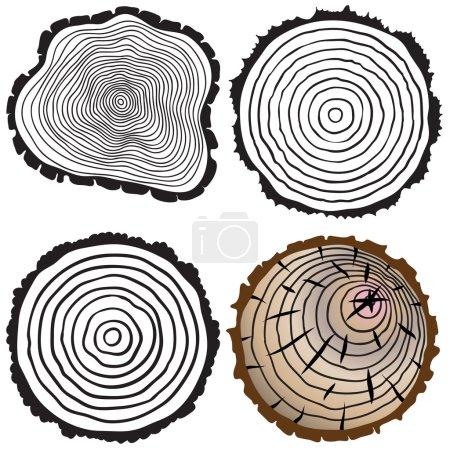 Illustration pour Ensemble de quatre anneaux d'arbre icônes. concept de tronc d'arbre coupé à la scie, foresterie et scierie. isolé sur fond blanc. illustration vectorielle moderne tendance de conception de logo . - image libre de droit