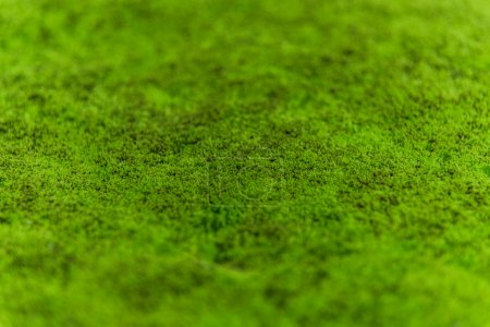 Photo pour Mousse verte texture de fond belle dans la nature - image libre de droit
