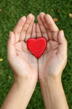 Red heart shape in hands