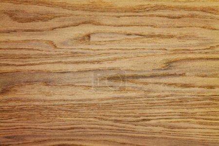 wooden oak background