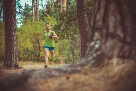 An athlete running through the woods