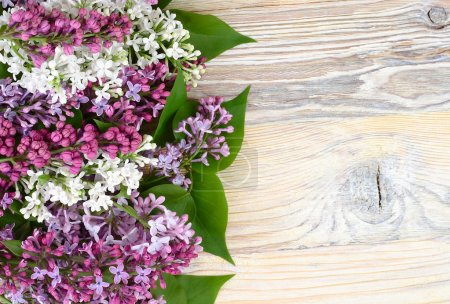 Photo for Flower wooden background with a lilac with a place for the text. Top view. - Royalty Free Image