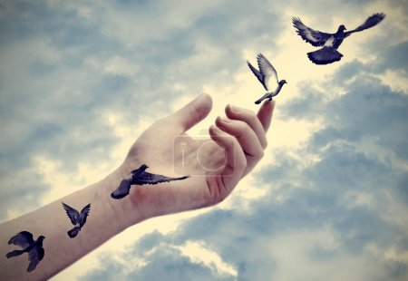 Bird tattoos come to life, conceptual