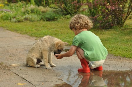 Boy, child in red rubber Wellingtons, talking with the puppy. Childhood in diapers.