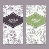 Set of 2 labels with Damask rose and jasmine sketch