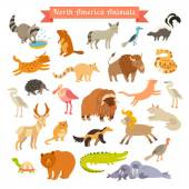 North America animals vector illustration Big vector set Isolated on white background Preschool baby continents travelling drawn