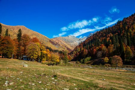 Photo for Mountain pass Pyv in Abkhazia. Magnificent autumn landscape. Alpine meadows. Auadhara. - Royalty Free Image