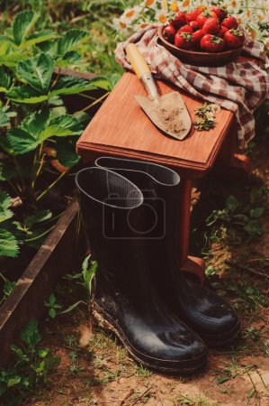 rubber boots with shovel and strawberries