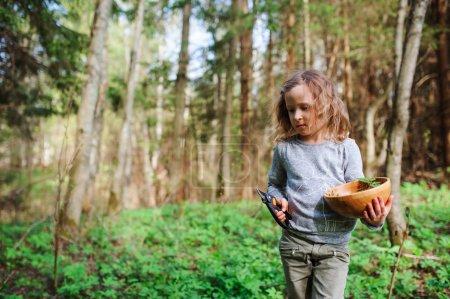 Photo pour Enfant fille explorer la nature au début de la forêt printanière. Les enfants apprennent à aimer la nature. Enseigner aux enfants les changements de saisons. Temps chaud . - image libre de droit