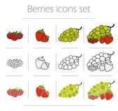 Berries food icons set Healthy fresh diet food symbols Raspberries strawberries and bunch of grapes