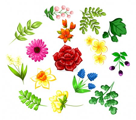 Illustration for Set a bouquets of flowers design element, - Royalty Free Image