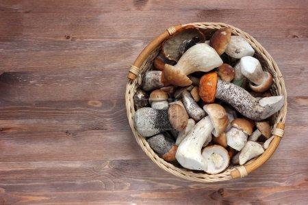 Ein Stillleben mit Pilzen.