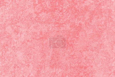 Gentle-pink texture. Pink background. Pink wall.