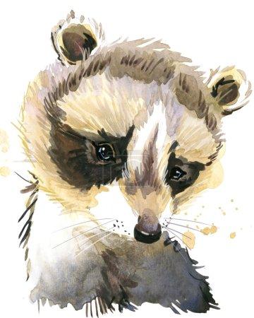 Photo pour Raton laveur mignon. Raton laveur. Aquarelle animaux. Animal sauvage. Animaux de la forêt. Art du T-Shirt. - image libre de droit