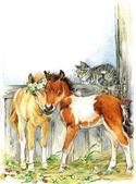 Roztomilý kůň. Akvarel ilustrace