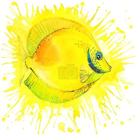 T-shirt graphics gold fish, illustration watercolor