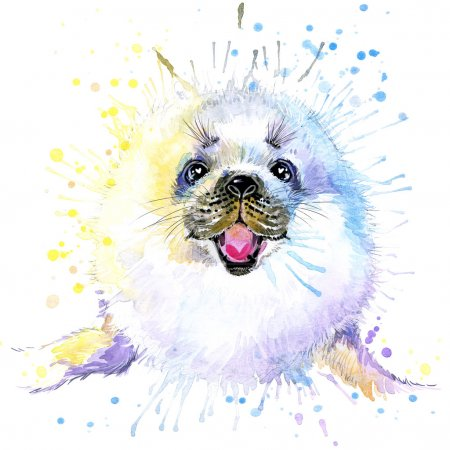 T-shirt graphics cute white seal, illustration watercolor