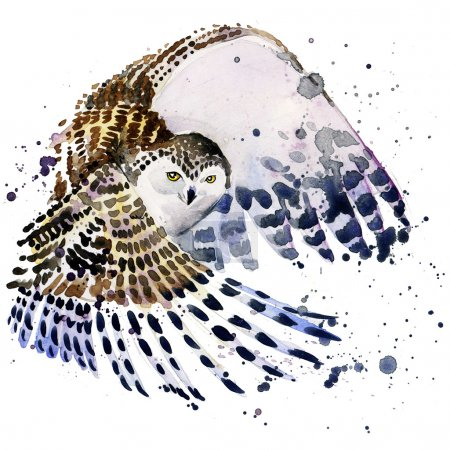 snowy owl T-shirt graphics, snowy owl illustration with splash watercolor textured background.