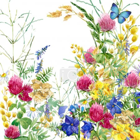 Photo for Field Herb flowers and butterfly watercolor background. - Royalty Free Image