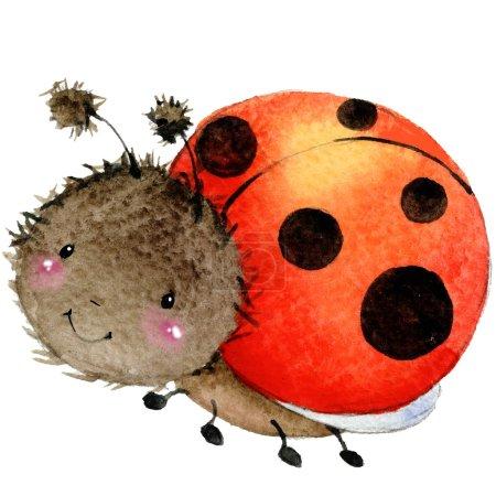Cartoon insect ladybug watercolor illustration. isolated on white background.