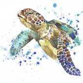 Sea turtle T-shirt graphics. sea turtle illustration with splash watercolor textured background. unusual illustration watercolor sea turtle fashion print, poster for textiles, fashion design