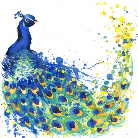 Exotic peacock T-shirt graphics. peacock illustration with splash watercolor textured  background. unusual illustration watercolor peacock for fashion print, poster, textiles, fashion design