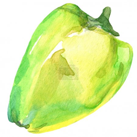 Photo for Organic vegetable green pepper. watercolor illustration - Royalty Free Image