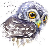 Owl T-shirt graphics, snowy owl illustration with splash watercolor textured background. illustration watercolor snowy owl for fashion print, poster for textiles, fashion design