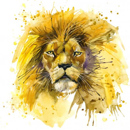 African Lion T-shirt graphics,  Lion illustration with splash watercolor textured background. unusual illustration watercolor  Lion King fashion print, poster for textiles, fashion design