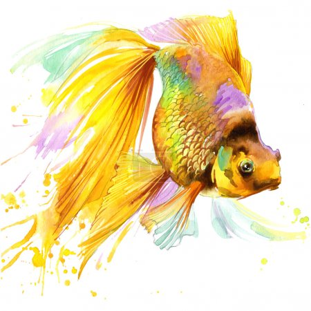 gold fish T-shirt graphics, gold fish illustration with splash watercolor textured background. illustration watercolor gold fish fashion print, poster for textiles, fashion design