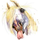 White horse kiss T-shirt graphics. horse illustration with splash watercolor textured  background. unusual illustration watercolor horse for fashion print, poster, textiles, fashion design