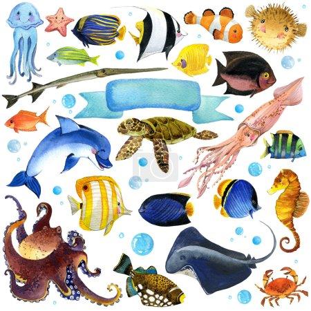 Sea Fish watercolor set.  unusual sea fauna. watercolor marine theme. underwater world set. watercolor illustration exotic Fish for children