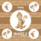 Crazy monkey pattern