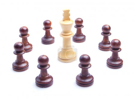 Wooden king and pawns