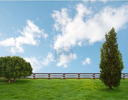 Photo for Beautiful landscape - Royalty Free Image