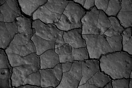 Cracked floor